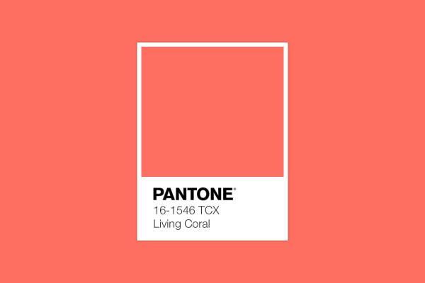 رنگ-سال-۲۰۱۹